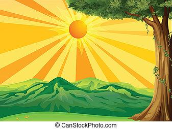 a, sonnenaufgang, ansicht