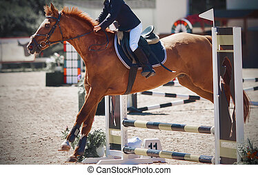 A sorrel pretty pony with a rider in the saddle jumps over a low barrier