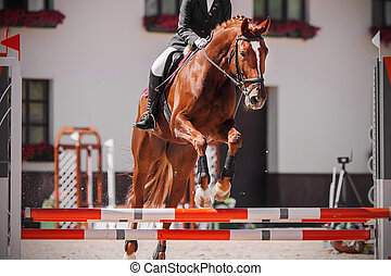 A sorrel racehorse with a rider in the saddle jumps over the red barrier at a show jumping competition.