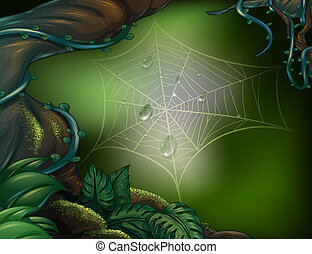 A spider web in a rainforest - Illustration of a spider web...