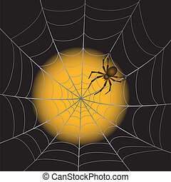 A Spider Web with Spider on moonlight background. Vector Illustration