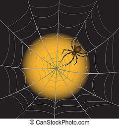 A Spiderweb with Spider - A Spider Web with Spider on ...