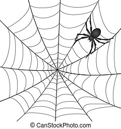 A Spiderweb with Spider on white background. Vector...