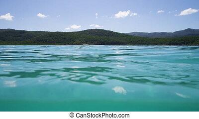 A split-shot underwater showing a landscape - Split-shot...