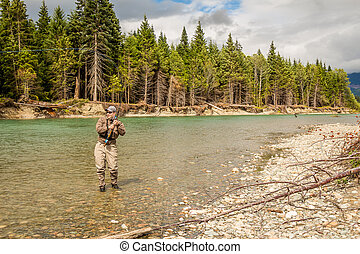 A sport fly fisherman hooked into a salmon on a river in British Columbia, Canada