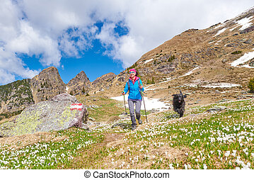 A sporty woman in the mountains during an excursion with her dog