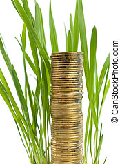 A stack of coins like the grass growing