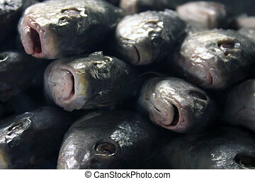 A stack of fish