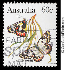 A stamp printed in Australia shows a Wood white butterfly -...