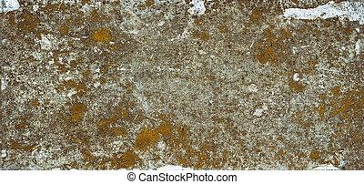 a, steinigen textur, mit, moss., hintergrund