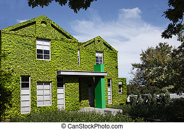 a house literally covered in grass, a greener lifestyle. - A...