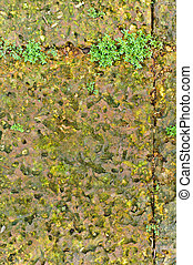 A stone tile texture