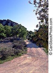 A stony path.