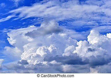 A stormy landscape with blue Cumulus clouds on the horizon.