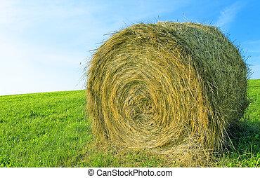 straw roll - a straw roll in a green field