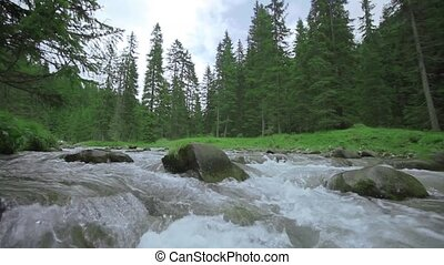 A stream in slow motion with boulders in the middle and green nature behind