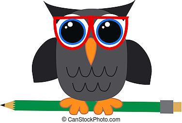 a student or teacher owl