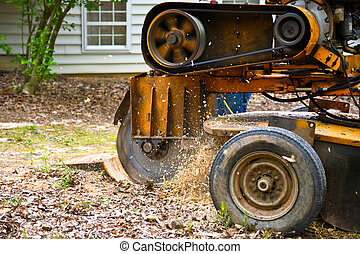 Stump Grinding - A Stump Grinding Machine Removing a Stump ...