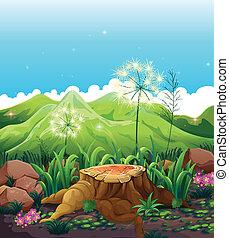 A stump near the mountains