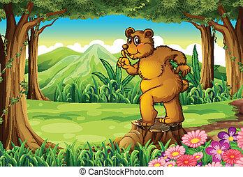 A stump with a big bear