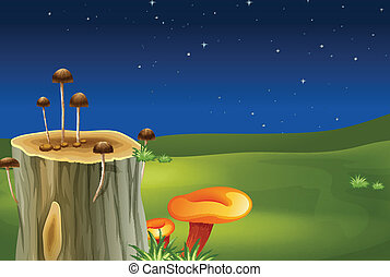 A stump with mushrooms