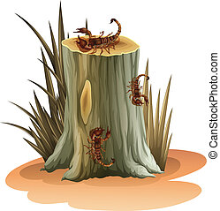 A stump with scorpions