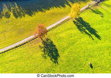 a sunny farm landscape from above