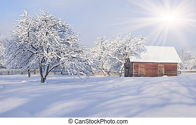 A sunny landscape in the village. Winter morning.