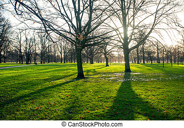 A Sunny morning in spring Park
