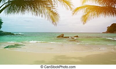 A sunny tropical beach with palm leaves on the sky background