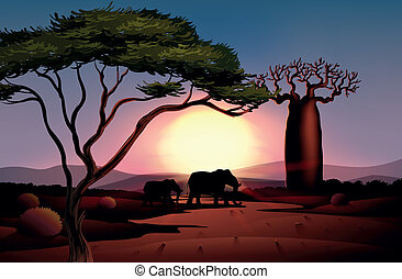 A sunset at the desert with animals