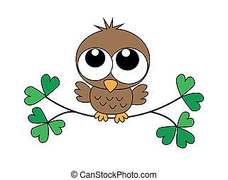 a sweet little baby owl