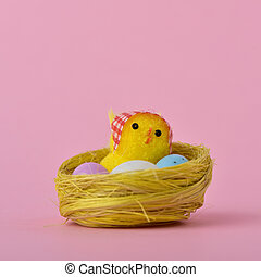 teddy chick in a nest
