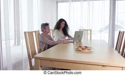 A teenage girl and her grandmother with laptop at home. - A...