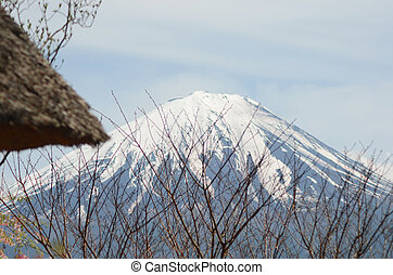 A thatched roof and bare branches frame a view of Mt Fuji.