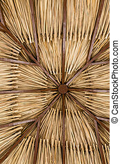 Thatched Roof of Palm Fronds - A Thatched Roof of Palm...