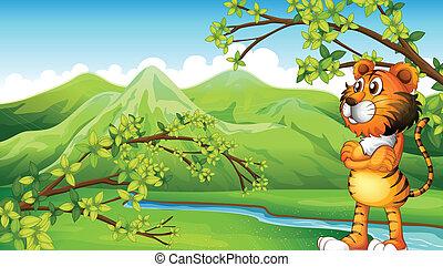 A tiger near the mountain