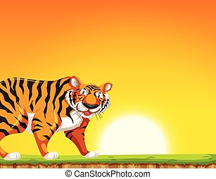 A tiger on sunset background