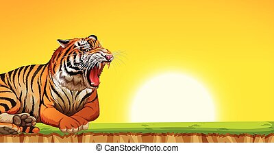 A tiger on sunset scene
