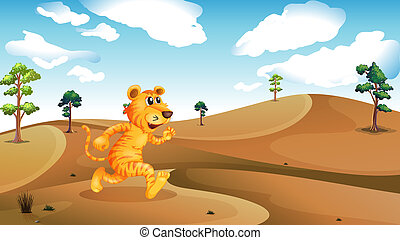 A tiger running in the desert