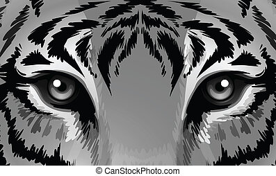 A tiger with sharp eyes - Illustration of a tiger with sharp...