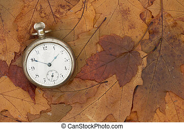 A Time for Fall