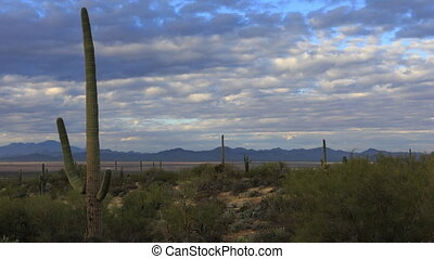 Timelapse of vista view in Tucson Mountain Park - A...