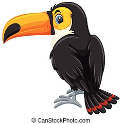 A toucan on white background