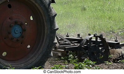 A tractor harrows a field with a metallic harrow in late...
