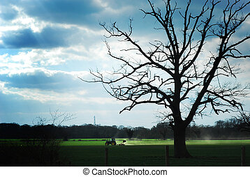 A tractor in a field with a spooky tree and a moody sky