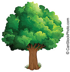 A tree at the forest - Illustration of a tree at the forest...