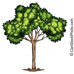 A tree design on white background