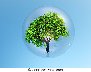 a tree in a buble - a tree in a bubble