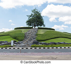 a tree on the hill
